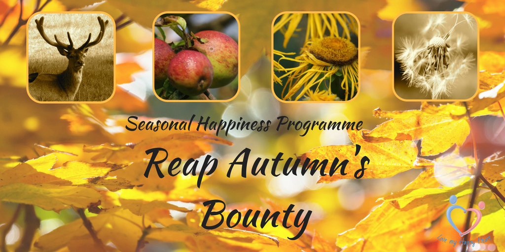 Free Autumn Infographic – Reap Autumn's Bounty