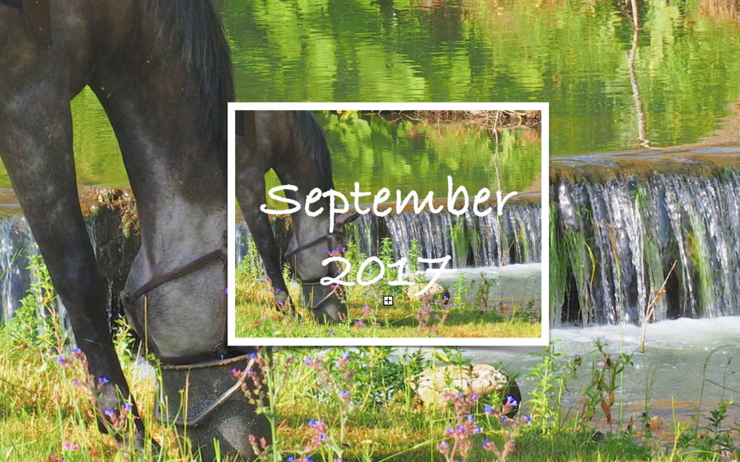 Happiness Calendar – September